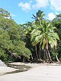 Cape Tribulation 2004 - panoramio (2).jpg