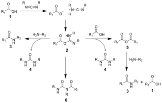 Carbodiimide - The reaction mechanism of amide formation using a carbodiimide.