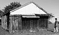 Carlingford-timber slab shed mid-19th century-Tomah St.jpg