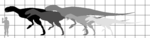 Carnotaurini sizes.png