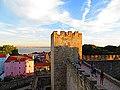Castelo de S. Jorge - panoramio (1).jpg