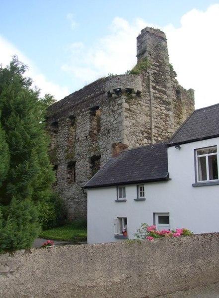 File:Castle, Tinnahinch, Co. Carlow - geograph.org.uk - 212867.jpg