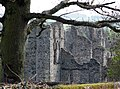 Castle Acre Priory - geograph.org.uk - 1707268.jpg
