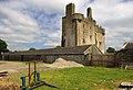 Castles of Munster, Killaleigh, Tipperary (4) - geograph.org.uk - 1952470.jpg