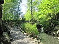 Central Park May 2019 39.jpg