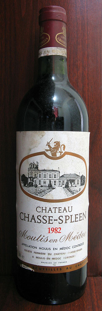 Château Chasse-Spleen - Château Chasse-Spleen