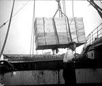Chargement dune caisse sur un bateau, marin (5415884466).jpg