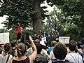 "Charlottesville ""Unite the Right"" Rally (35780264324).jpg"