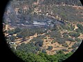 Charred Ground After Fire - panoramio.jpg