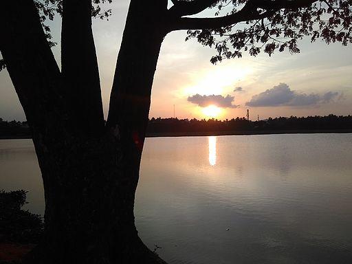 Chitlapakkam-lake-chennai-5-r