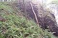 Chotovický vrch B.jpg