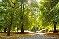 Christchurch Botanic Gardens, possibly Beswick's Walk.jpg
