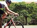 Ciclista no eixo rodoviário - Brasilia DF - panoramio.jpg