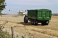 Claas Lexion 580 and Bailey trailer at harvest in England.jpg