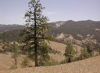 Diablo Range - The Diablo Range in the vicinity of San Benito Mountain