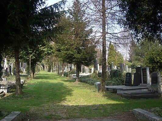 Cmentarz żydowski w Bielsku-Białej
