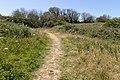 Coastal path in St John, Jersey.jpg