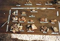 ¿Qué es la Arqueología? 200px-Cocci