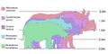 Comparatio-magnitudinis-specierum-rhinocerotum.png