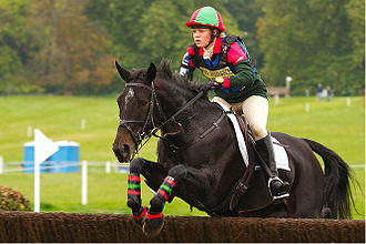 Flow (psychology) - Flow may occur in challenging sports such as eventing.
