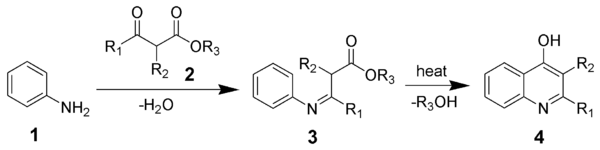 The Conrad-Limpach synthesis