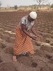 MS ACTERRA - Action publique pour le développement durable des territoires et de l'agriculture