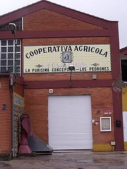 Cooperativa agrícola la Purísima Concepción. Los Pedrones 04.jpg