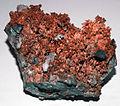 Copper (Adams County, Pennsylvania, USA) (17294207162).jpg