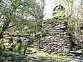Cottage ruins, Rhiwddolion - geograph.org.uk - 404469.jpg