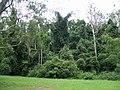 Cottan-Bimbang NP.JPG