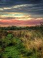 Cottingham IMG 4948.jpg - panoramio.jpg