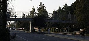 Covell bike overpass.jpg