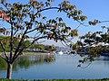 Crisp autumn view from Sutcliffe Park (5084381802).jpg
