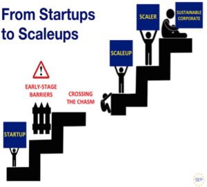 Scaleup company - Adapted from Geoffrey Morre's Crossing Growth Chasm