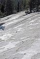 Crusts of glacial polish (Polly Dome, Yosemite National Park, California, USA) 2.jpg