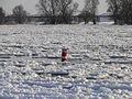 Dömitz Elbe Eisgang Boje Winter 2012-02-05 013.JPG