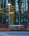 Dülmen, Parkbank am Wildpark -- 2016 -- 0356-62.jpg