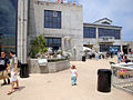 DSC28353, Monterey Bay Aquarium, California, USA (5381192841).jpg