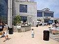 DSC28353, Monterey Bay Aquarium, California, USA (5381192841).jpg