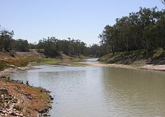 Darling River near Bourke with an above-average amount of water