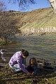 Deschutes Wild and Scenic River -- Beavertail (26122287525).jpg