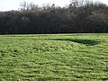 Ditch north of Rotherley Wood - geograph.org.uk - 316286.jpg