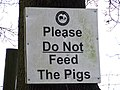 Do Not Feed The Pigs, apart from Jimmy - geograph.org.uk - 1131443.jpg