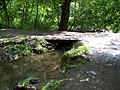 Drahanské údolí, Drahanský potok, můstek u Prdlavé studánky.jpg