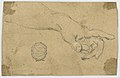 Drawing, Study- An outstretched left forearm and hand, 1750–1800 (CH 18118751).jpg