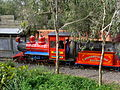 Dreamworld Railway.jpg