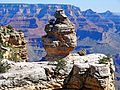 Duck on a Rock, Grand Canyon 9-15 (21518881914).jpg