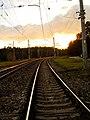 Dzelzcels - panoramio.jpg