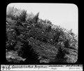 ETH-BIB-Gwandelenfluh-Bergsturz, steilabsturz Profil-Dia 247-00926.tif