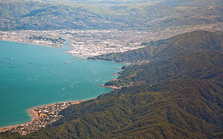 Eastborne and Petone, Lower Hutt, New Zealand, 3rd. Dec. 2010 - Flickr - PhillipC.jpg